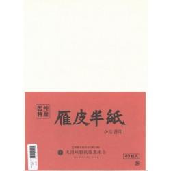 Papier Washi - Ganpi Hanshi - 40 feuilles