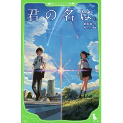 Kimi no na wa, Your name le roman