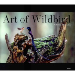 Art of Wildbird