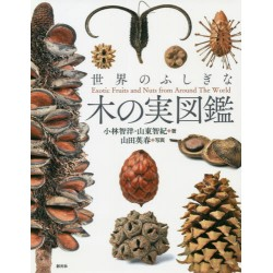 Exotic Fruits and Nuts from Around The World